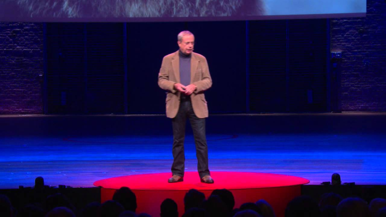 Getting in control and creating space | David Allen | TEDxAmsterdam 2014