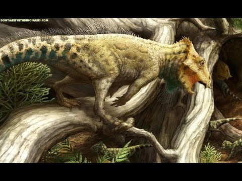 Bunny Sized Horned Dinosaur The First Of Its Kind In North America