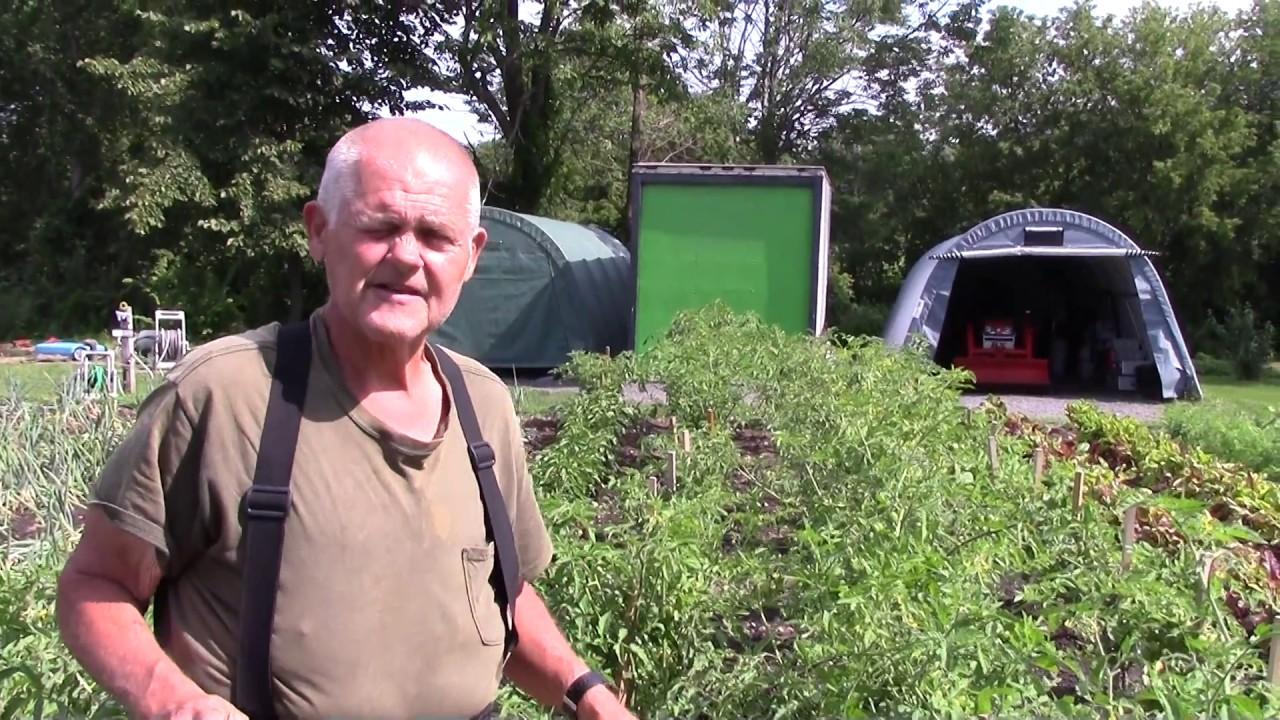 Howie's Veggies  8-2-17
