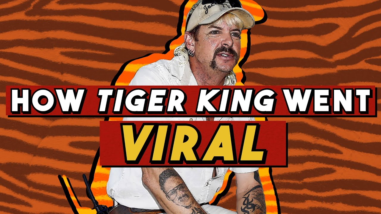 Tiger King Still Reigns Supreme And Now Nicolas Cage Is Involved The Ringer