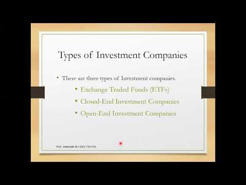 Lecture # 4 Indirect Investment (Definition & Types)