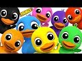 Learn Colors With Ducks | Learning colors song for Kids by Farmees