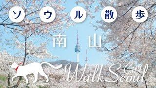 [ソウル散歩]南山 Walk Seoul Namsan