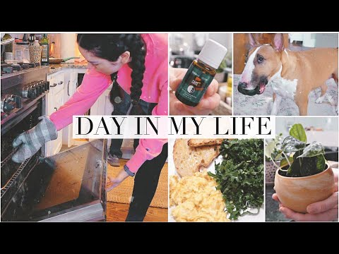 #2-diml!-pulling-my-home-together,-gardening-&-cooking!