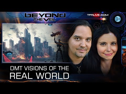 DMT Visions of the Real World and Artificial Intelligence - Beyond The Veil