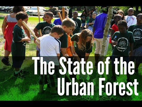 The 2018 State of the Urban Forest