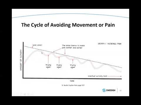 PT Lecture #9 Best Exercise for Persistent Pain