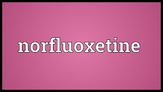 Norfluoxetine Meaning