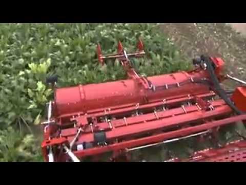 Teknolojik Tarım Ürünleri