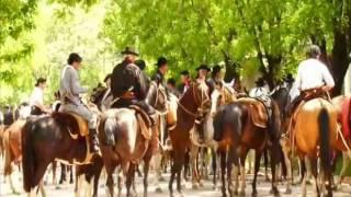 Dia de la Tradición - San Antonio de Areco