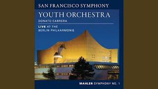 Symphony No. 1 in D Major: I. Langsam. Schleppend.