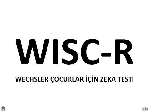 wisc-r zeka testi uygulayıcı yetiştirme sertifika kursu eğitimi