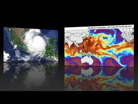 "Ocean energy ""pulse"" - Strange seismogram in Godfrey, Georgia"