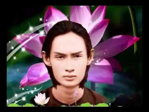PGHH - Luc Tu Hong Danh - Be Nhu Y