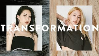 HAIR TRANSFORMATION: JET BLACK TO BLONDE IN ONE SESSION