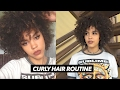 CURLY HAIR ROUTINE - HOW TO GET VOLUME *UPDATED*