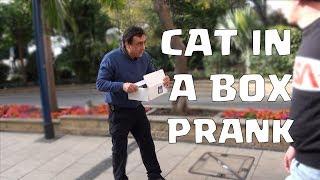 CAT IN A BOX PRANK!