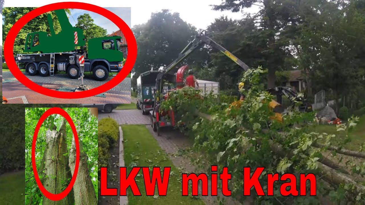 Scania LKW mit Kran - Erster Einsatz | Baumpflege Mertens