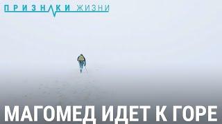 Магомед идет к горе. Путь к метеостанции в Дагестане   ПРИЗНАКИ ЖИЗНИ