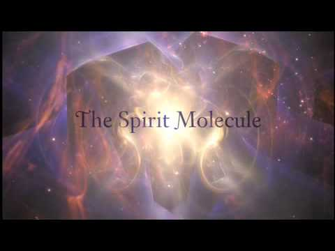 DMT: The Spirit Molecule Teaser