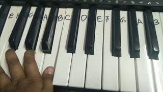 Inviting of my new piano-CTK-245 Casio