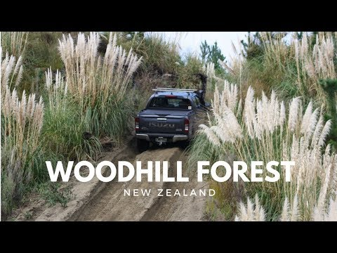 New Zealand - Woodhill Forest 2018