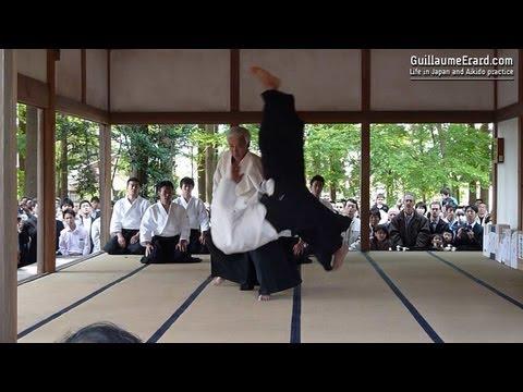 Aikido - Ueshiba Moriteru & Ueshiba Mitsuteru demonstration at the Aikijinja Taisai 2013