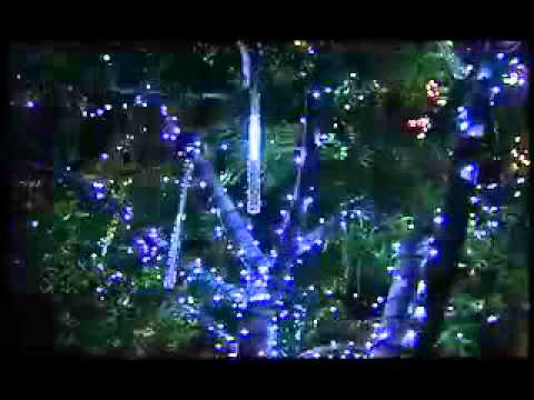 Holiday lights and magic outdoor tree christmas lights youtube mozeypictures Image collections