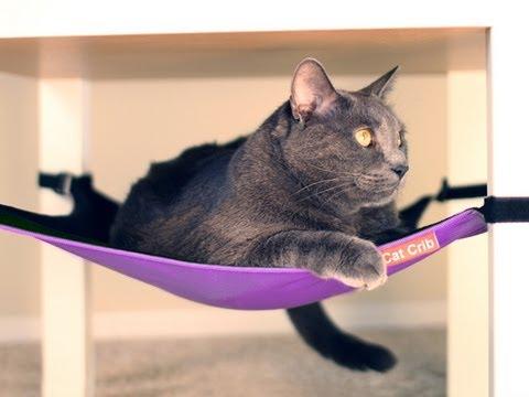 Cat Crib - Hammock Lounger