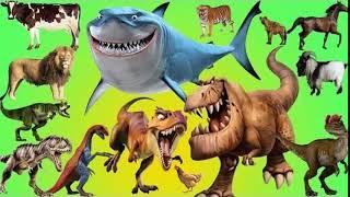 Dinosaur roar 18
