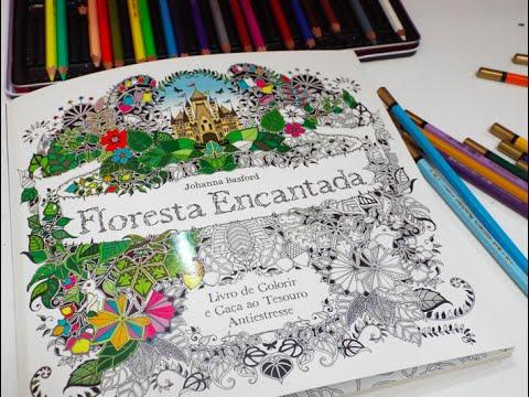 Floresta Encantada Livro De Colorir Youtube