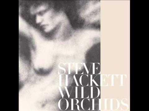 Steve Hackett - Howl