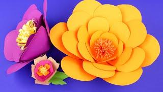 Объемные цветы из бумаги своими руками - мастер-класс(Как сделать красивые объемные цветы своими руками? В нашем новом мастер-классе мы покажем, как пошагово..., 2016-09-12T10:00:02.000Z)