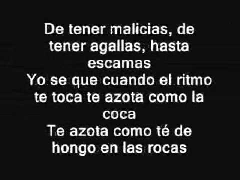 SE VALE TO TO CALLE 13  LETRA
