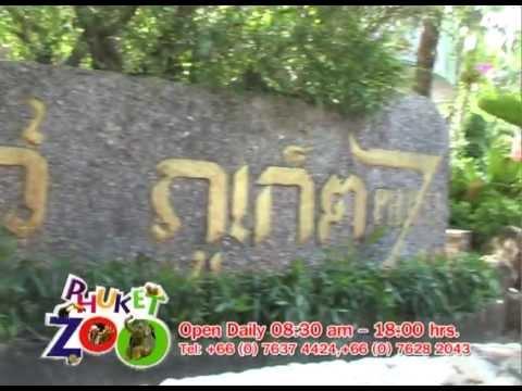 Phuket Zoo สวนสัตว์ภูเก็ต