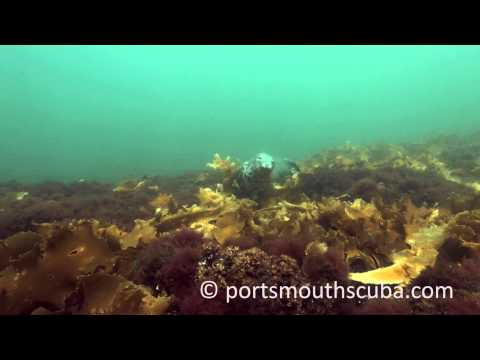 Isles of Shoals, diving in New England