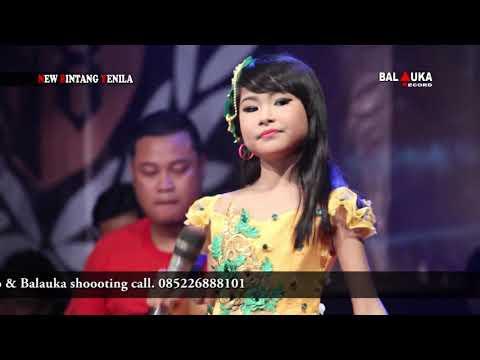 Banyu Langit Aulia Nirwana New Bintang Yenila Live Kalitengah Pancur