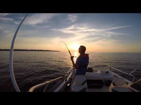Bulefiskeri på Øresund - Torskfiske på Öresund - Deep Sea fishing for cod