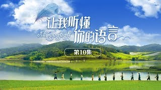 《让我听懂你的语言》 第10集| CCTV电视剧 thumbnail