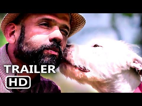 The Mayor Pete Kennedy - Netflix's new Dogs show is going to make you cry! See why...