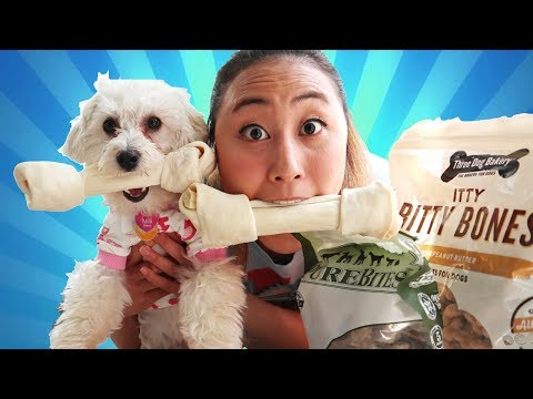 EATING PUPPY SNACKS WITH MY PUPPY CHALLENGE!!