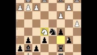 Медленный эстонский шахматист