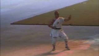 Repeat youtube video Shaolin Chang Quan