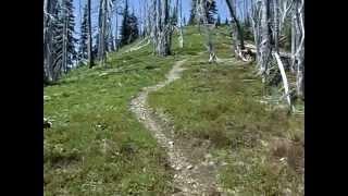 Skyline Trail Run - Manning Park BC