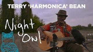 "Terry ""Harmonica"" Bean, ""Doing My Own Thing"" Night Owl   NPR Music"