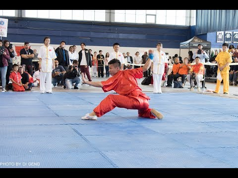 Forms Competition   U.S. Open Martial Arts Championship 2017