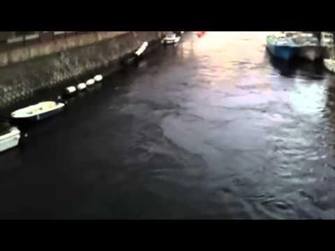Tsunami in Miura, Kanagawa Prefecture, Japan