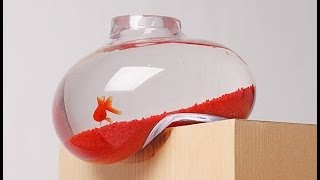 Unusual And Creative Aquariums Around The World Hd 2014 Hd