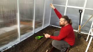 Pierwsze siewy warzyw-Szklarnia POLIWĘGLANOWA