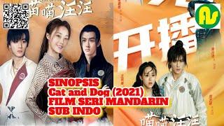 ⚫ SINOPSIS CAT AND DOG 2021 || FILM SERI MANDARIN